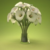 3d calla lily bouquet model