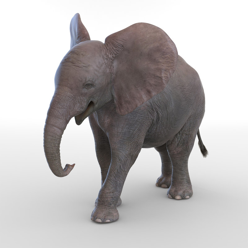 baby elephant pose 2 3d 3ds