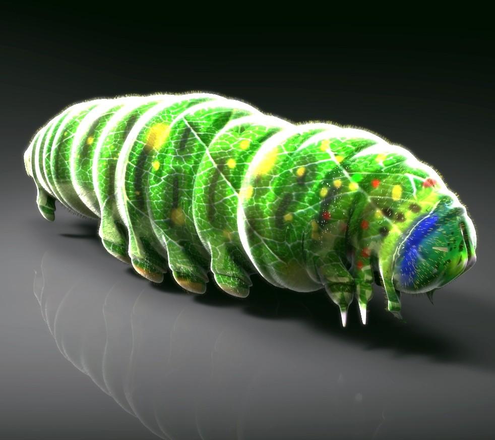 3d larva green model