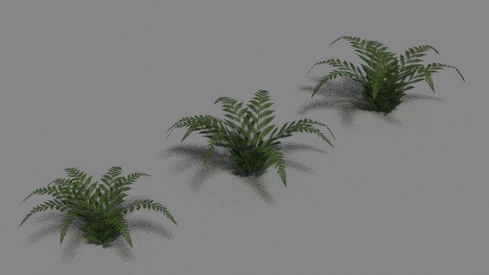 3d green fern model
