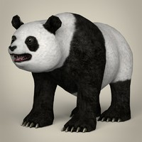 realistic giant panda 3ds
