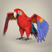 c4d realistic parrot