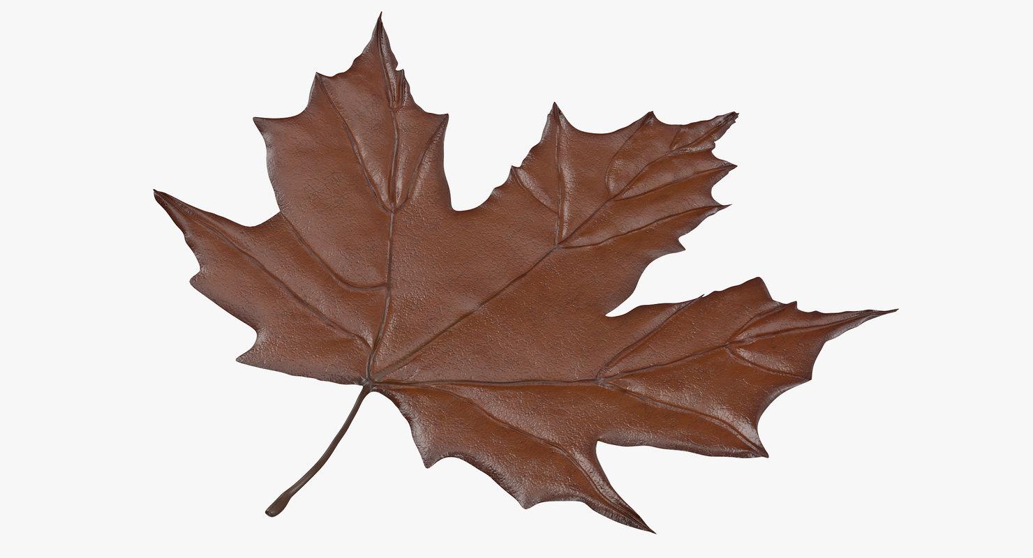 3d model of brown maple leaf