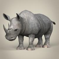 lwo realistic rhinoceros
