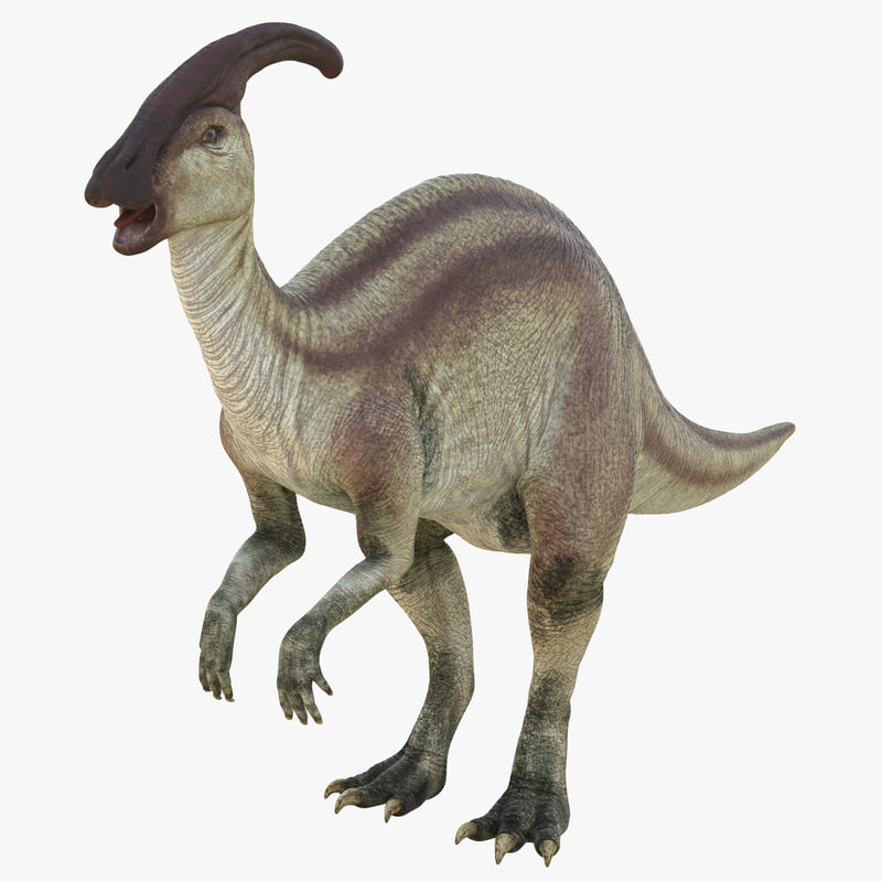parasaurolophus 3d c4d