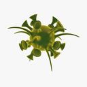 microscopic animal 3D models