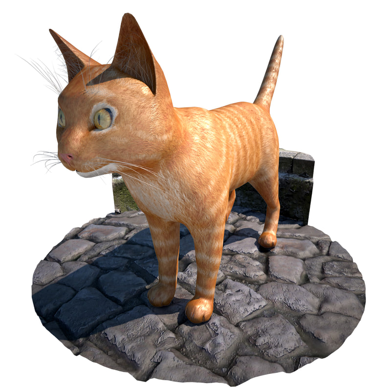 3d model cat nails whiskers