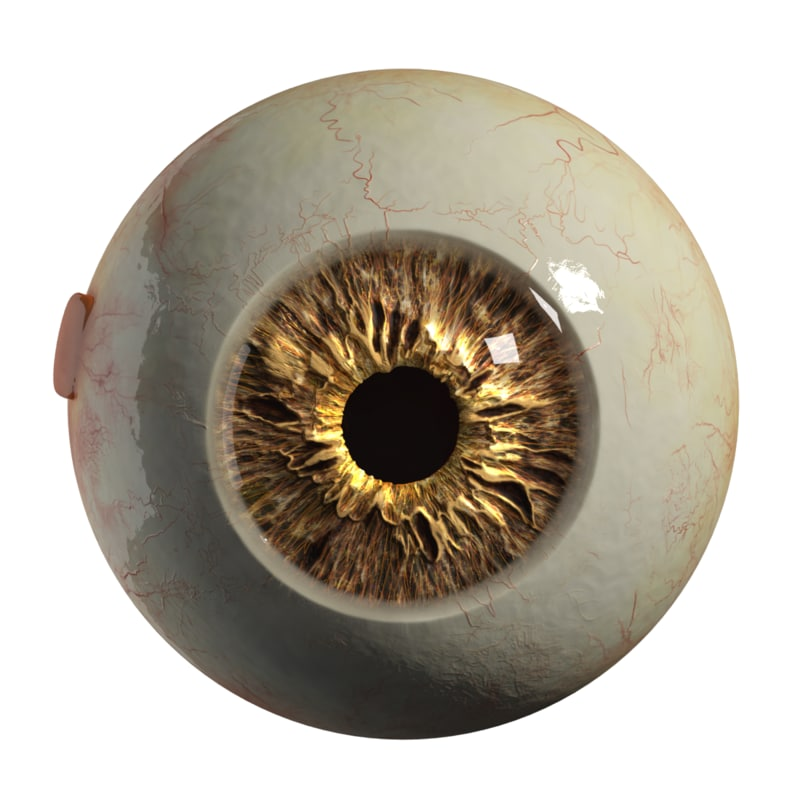 3d realistic eyeball eyes