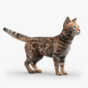 bengal cat fur 3d max