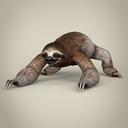 Sloth 3D models