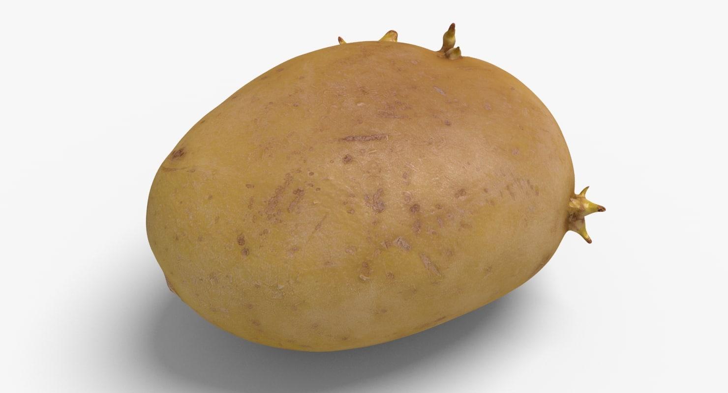 max potato ready unreal
