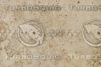 Fungi_Texture_0003