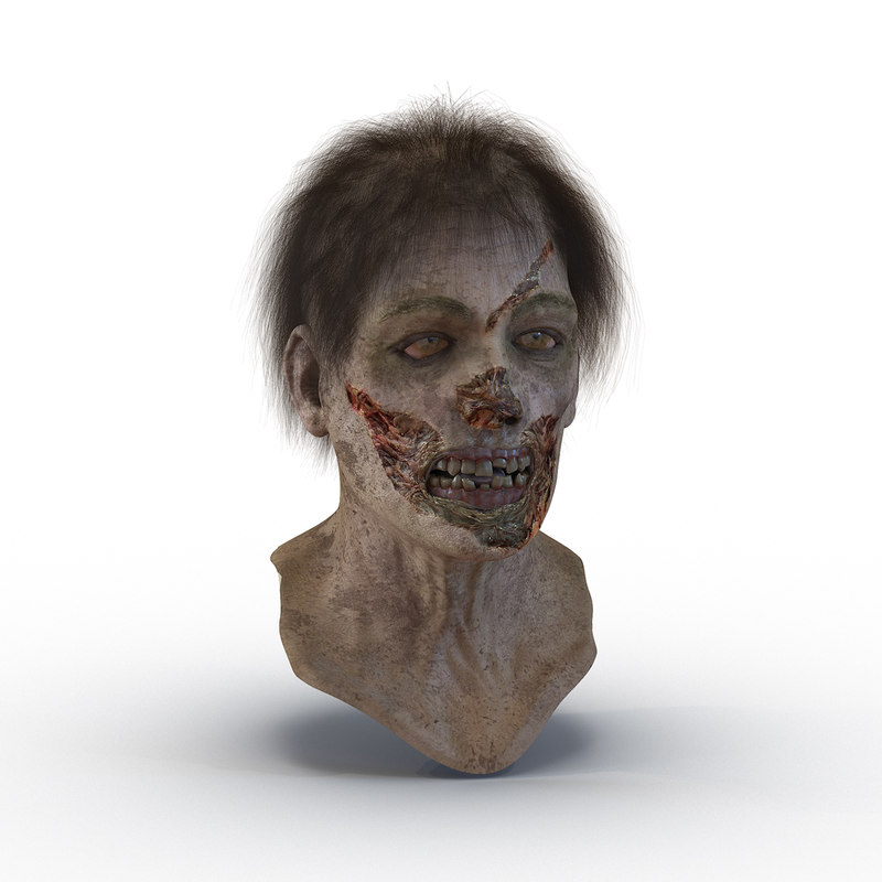 max zombie head hair modeled