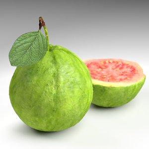 green guava 3d obj