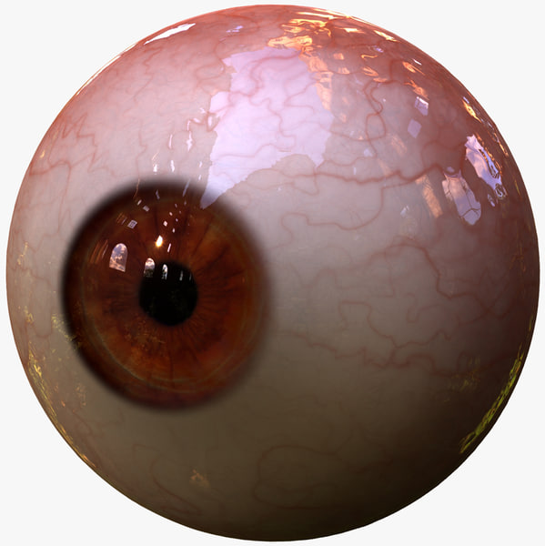 realistic human creature eye 3d model
