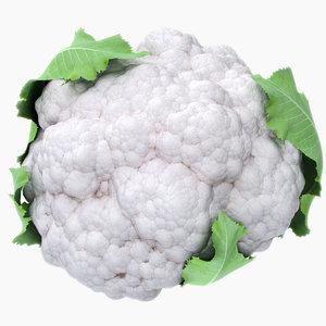 cauliflower leaves 3d max