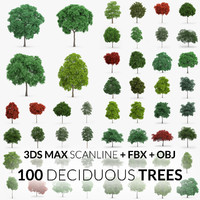 Deciduous Trees Collection - 100 Trees - FBX OBJ Scanline