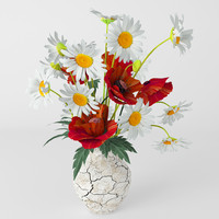 bouquet daisies poppies 3d max