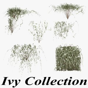 3d ivy plants model