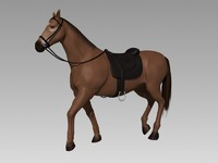 Horse Rigged Animated
