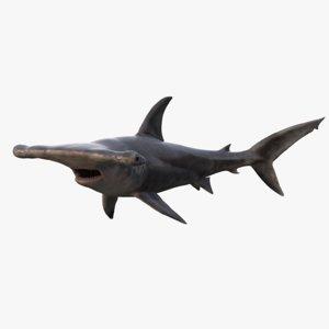 realistic hammerhead shark rigged 3d max