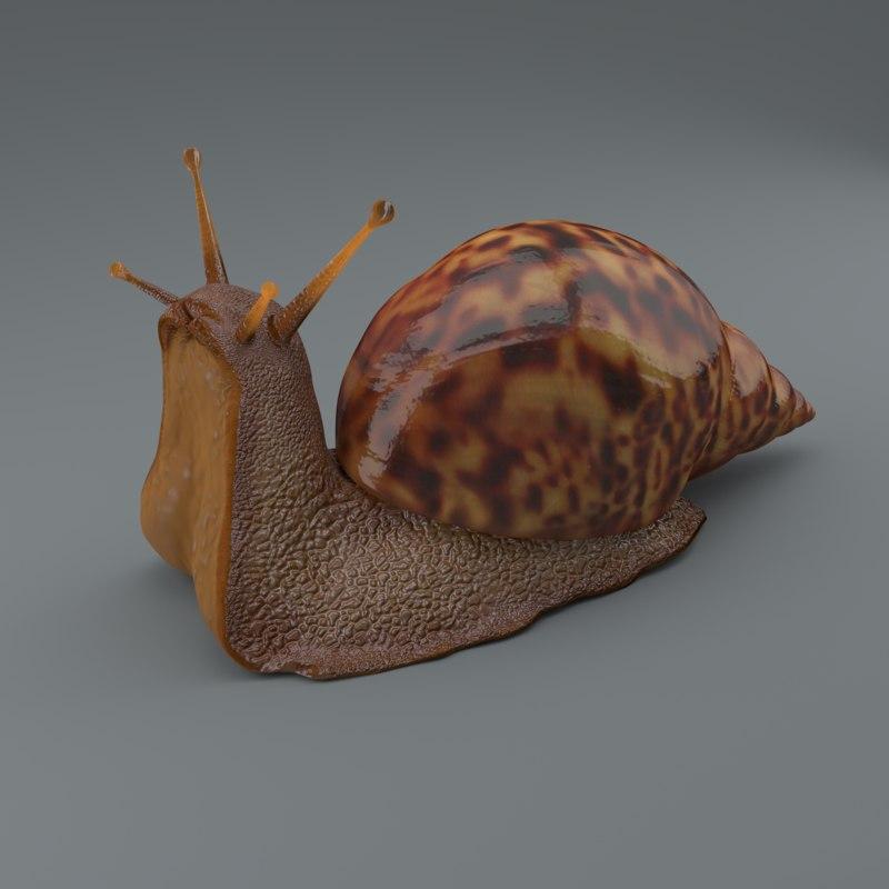 snail 3d obj
