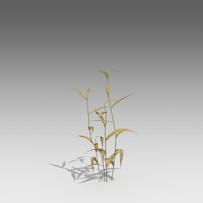 dry reed 3d model