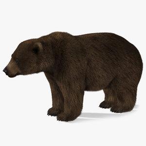 bear 2 fur obj
