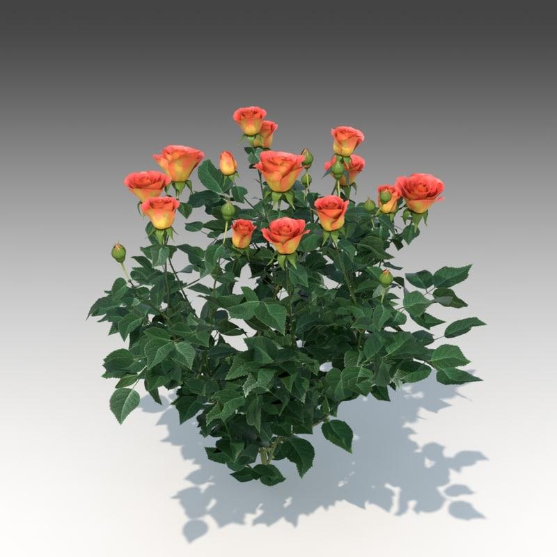 3d flower rose set