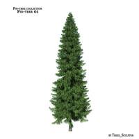fir-tree tree 3d max
