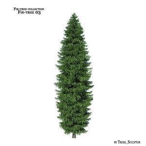 3d model of fir-tree tree