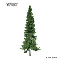 fir-tree tree 3d model