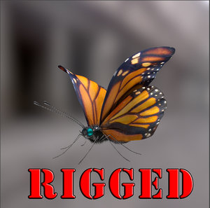 butterfly rigged obj
