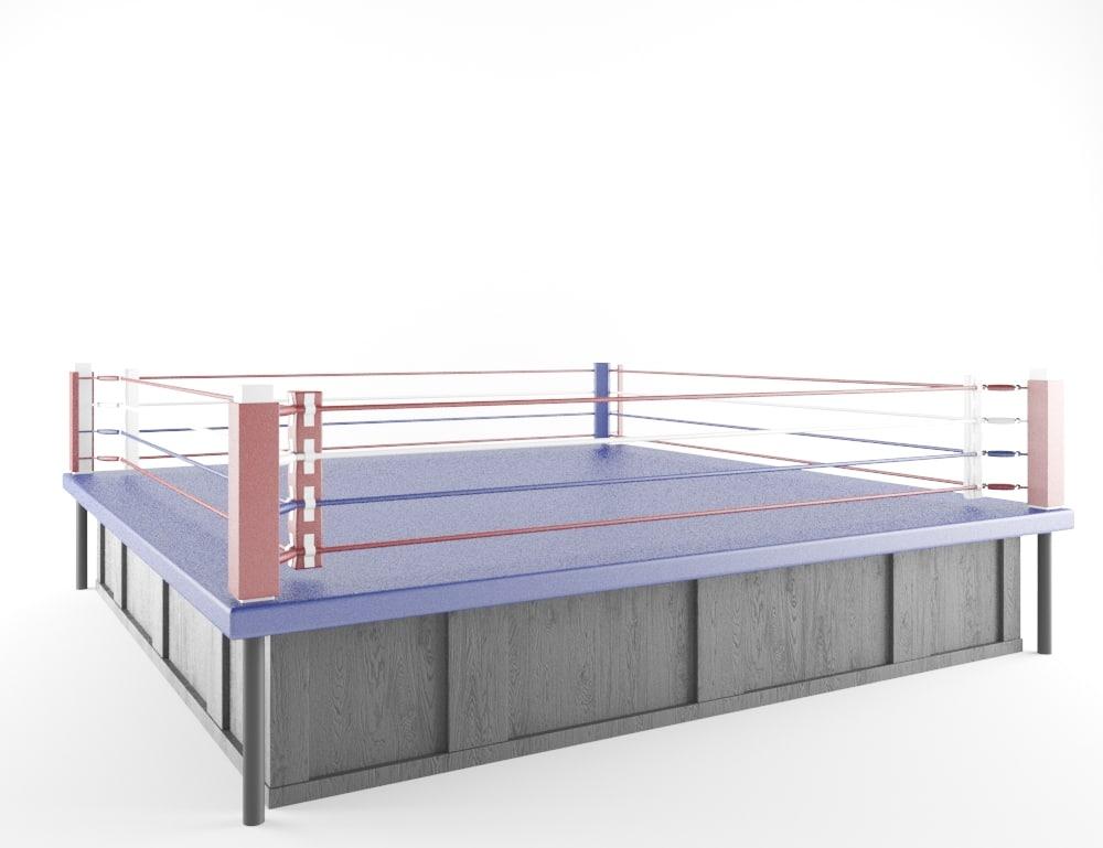 max boxing area