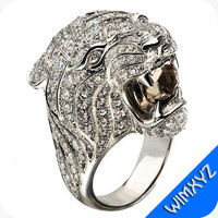 carrer ring lion