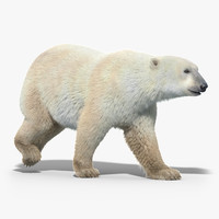 Polar Bear(FUR)(ANIMATED)