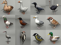 12 Low Poly Birds Pack