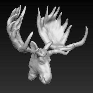 trophy moose head 3d obj