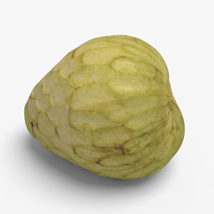 3d custard apple