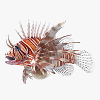 Lionfish Rigged