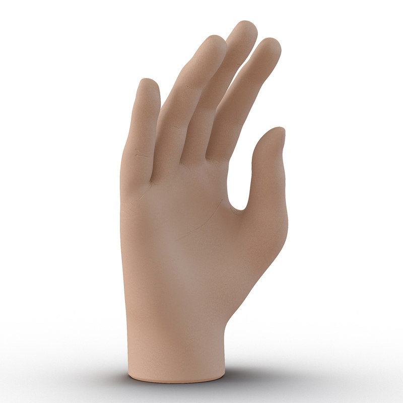 3d model of plastic hand