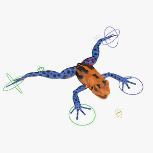 poison dart frog orange 3d model