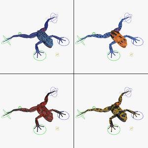 poison dart frog rigged 3d model