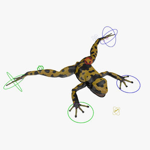 poison dart frog yellow 3d max