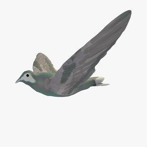 3d model single flying pigeon animation