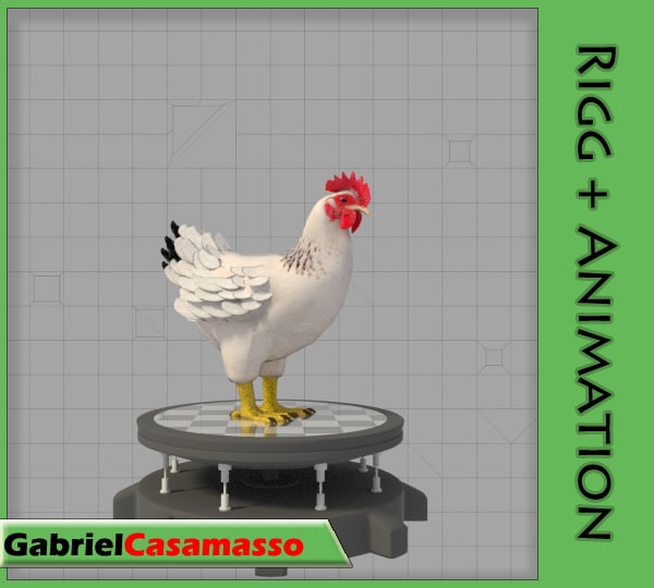 3d chicken gallus domesticus