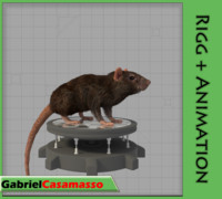 rat rattus animation 3d fbx