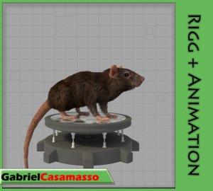 rat rattus animation 3d fbx