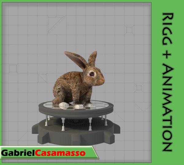 rabbit lepus sylvaticus fbx