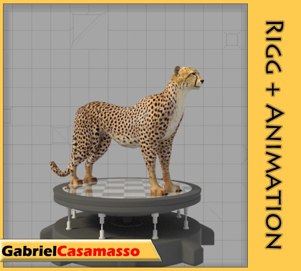 cheetah acinonyx jubatus 3d model